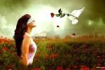 Любовь это..    Что такое любовь? Смысл любви. Значение любви. Виды любви